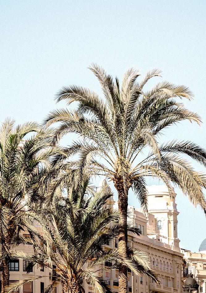 Business retreat Valencia merkstrategie